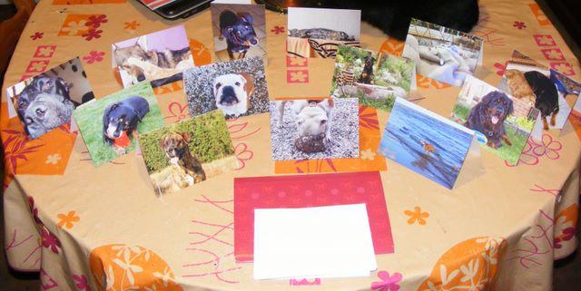 Carte de correspondance (postale) Dscf4551